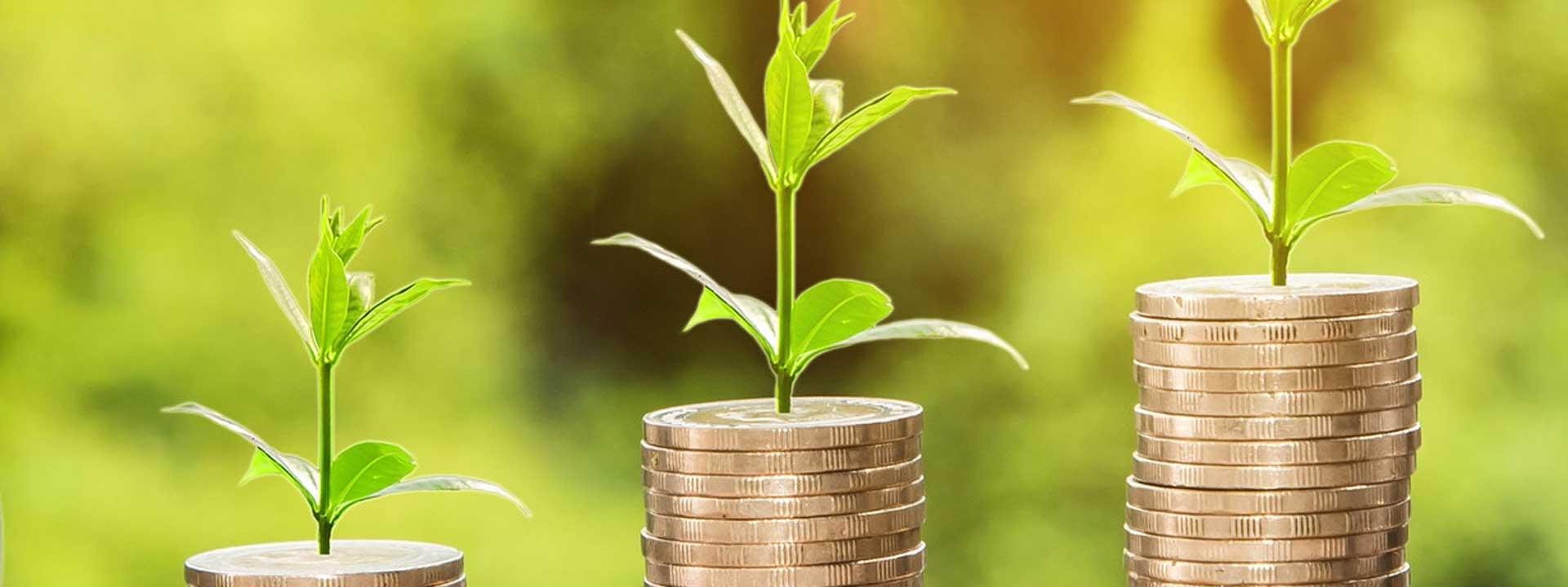 Finanzen und Verwaltung
